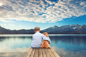 Great Ways To Create Memories Of Your Pets